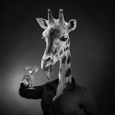 Photograph - Wild Life by Yvette Van Teeffelen