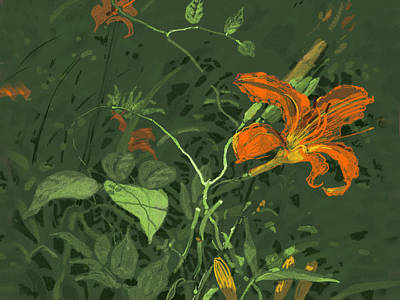 Digital Art - Wild Lilly by Judith Barath
