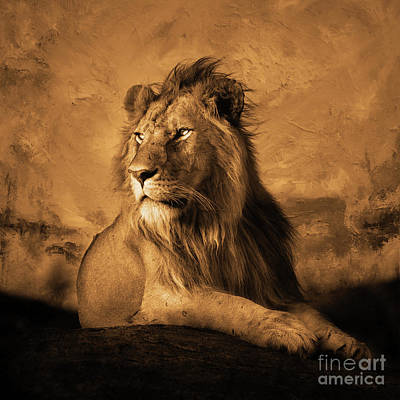 King Of Beasts Painting - Wild Lion  by Gull G