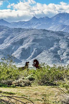 Photograph - Wild Metal Mustangs by Daniel Hebard