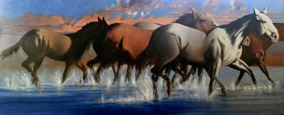 Wild Mustangs Of The Verder River Art Print