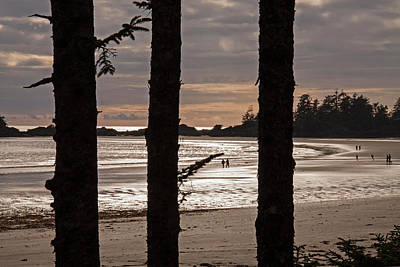Photograph - Wild Pacific Coast - 365-203 by Inge Riis McDonald