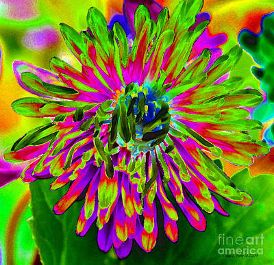 Diane Berry Digital Art - Wild Petals by Diane E Berry