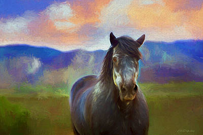 Painting - Wild Pinto 400 - Painting by Ericamaxine Price