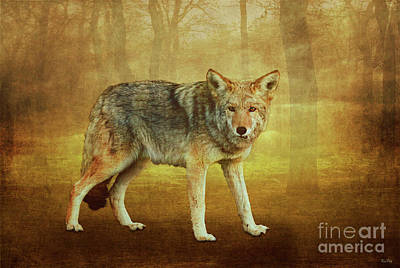 Wild Wolf Mixed Media - Wild Pup by KaFra Art