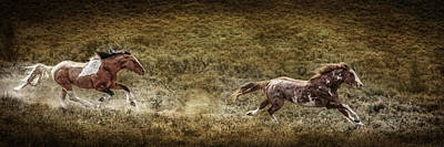 Photograph - Wild Pursuit by Wes and Dotty Weber