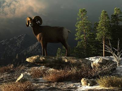 Goat Digital Art - Wild Ram by Daniel Eskridge