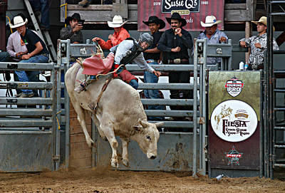Bull Riders Photograph - Wild Ride by Bill Keiran