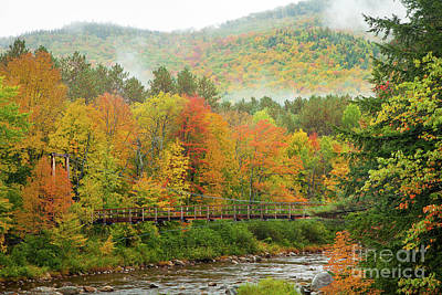Art Print featuring the photograph Wild River Bridge by Susan Cole Kelly