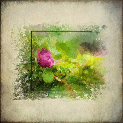 Painting - Wild Rose by Christina VanGinkel