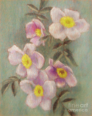 Painting - Wild Roses by Susan Lafleur