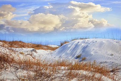 Photograph - Wild Sand Dunes by Debra and Dave Vanderlaan