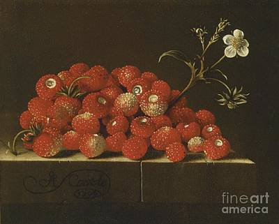 Wild Strawberries On A Ledge Art Print