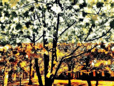 Wild Suburban Sidewalk Forest Art Print by Andy Rhodes