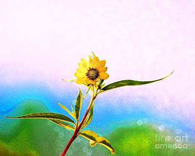Photograph - Wild Sunflower by Lila Fisher-Wenzel