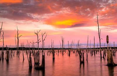 Wild Sunset Original by Bayarerdene Ulziisaikhan