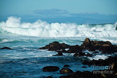 Old Masters - Wild Surf by Julieanne Case