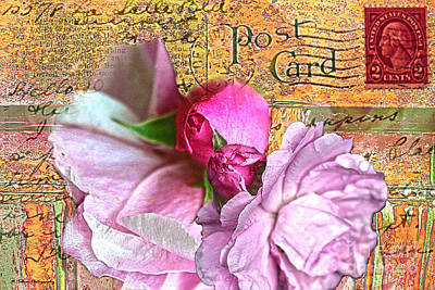 Photograph - Wild Tea Roses On Vintage Detroit Postcard by Nina Silver