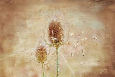 Painting - Wild Teasel by Mandy Tabatt