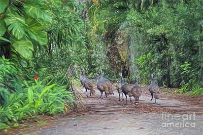 Photograph - Wild Turkey Promenade  by Olga Hamilton