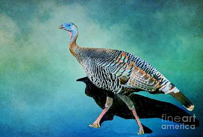 Photograph - Wild Turkey Season by Janette Boyd