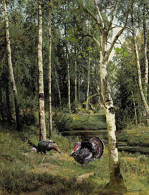 Turkey Digital Art - Wild Turkeys In Birch Tree Forest by Spadecaller