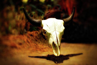 Bison Mixed Media - Wild West Bison Skull by Thomas Woolworth
