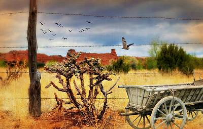 Photograph - Wild Wild West by Diana Angstadt