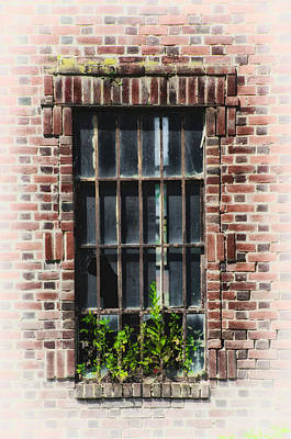 Brick Schools Digital Art - Wild Window Garden by Bill Cannon