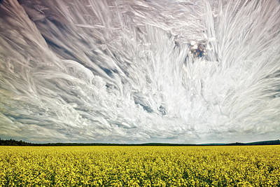 Photograph - Wild Winds by Matt Molloy