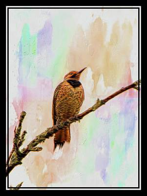 Photograph - Wild Woodpecker by Sherman Perry