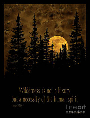 Photograph - Wilderness Is Not A Luxury But A Necessity by John Stephens