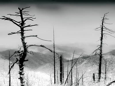 Photograph - Wilderness Of Desolation Bw by Tim Richards