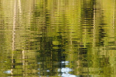 Photograph - Wilderness Reflections by Bob Grabowski