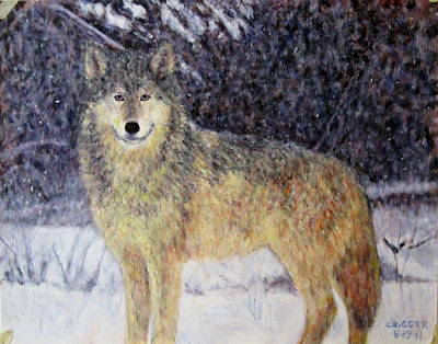 Painting - Wilderness Wolf by Glenda Crigger