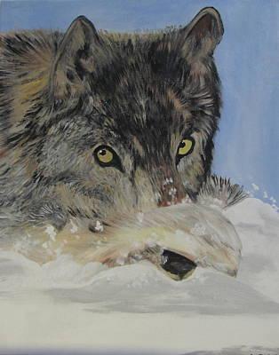 Wildeyes In The Snow Art Print