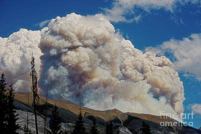 Photograph - Wildfire Smoke by David Arment