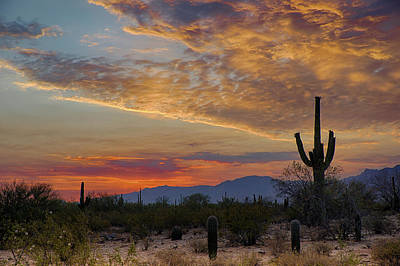 Photograph - Wildfire Sunset by Charlie Alolkoy