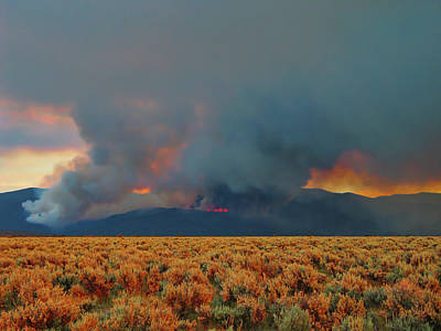 Photograph - Wildfire - Taos - New Mexico by Steven Ralser