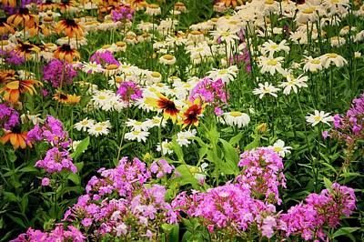 Photograph - Wildflower Blend by Flying Z Photography by Zayne Diamond