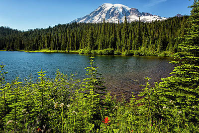 Photograph - Wildflower Color By Reflection Lake And Mt Rainier, No. 2 by Belinda Greb