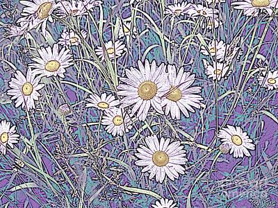 Wildflower Daisies In Field Of Purple And Teal Art Print