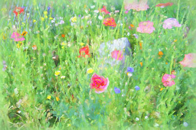 Photograph - Wildflower Day by Kathy Bassett
