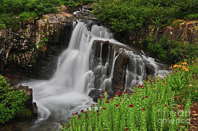 Photograph - Wildflower Falls by Randy Rogers