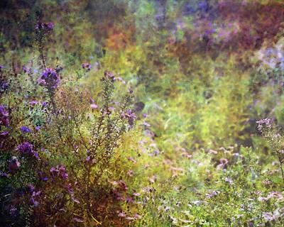 Wildflower Garden Impression 4464 Idp_2 Art Print