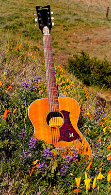 Photograph - Wildflower Guitar by Athena Mckinzie