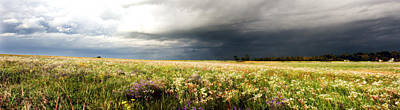 Photograph - Wildflower Panorama 2008 by Eric Benjamin