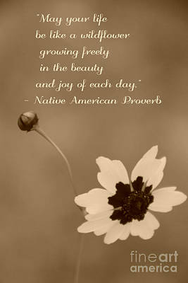 Wildflower Proverb Print by Amy Steeples