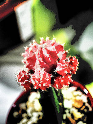 Red Photograph - Wildflower  V62 by John Straton