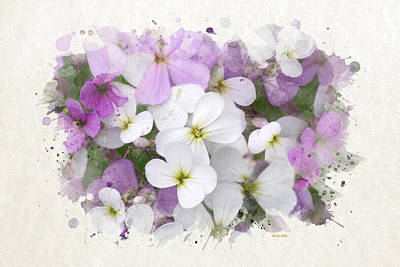 Mixed Media - Wildflower Watercolor Art by Christina Rollo